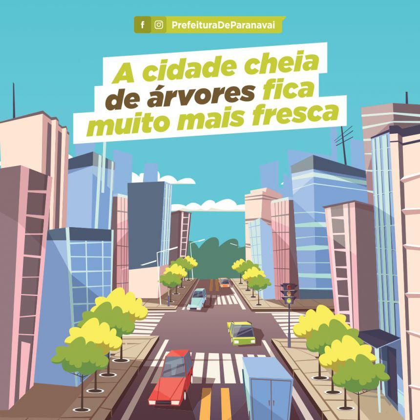 Prefeitura lança campanha de replantio de árvores no perímetro urbano de Paranavaí