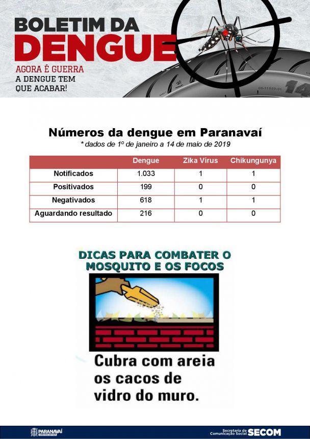 Boletim da Dengue - 1º de janeiro a 15 de maio de 2019