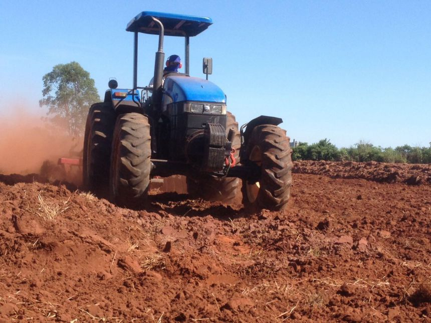 Agricultura prepara terreno para ajudar asilo Liz de Vasconcelos