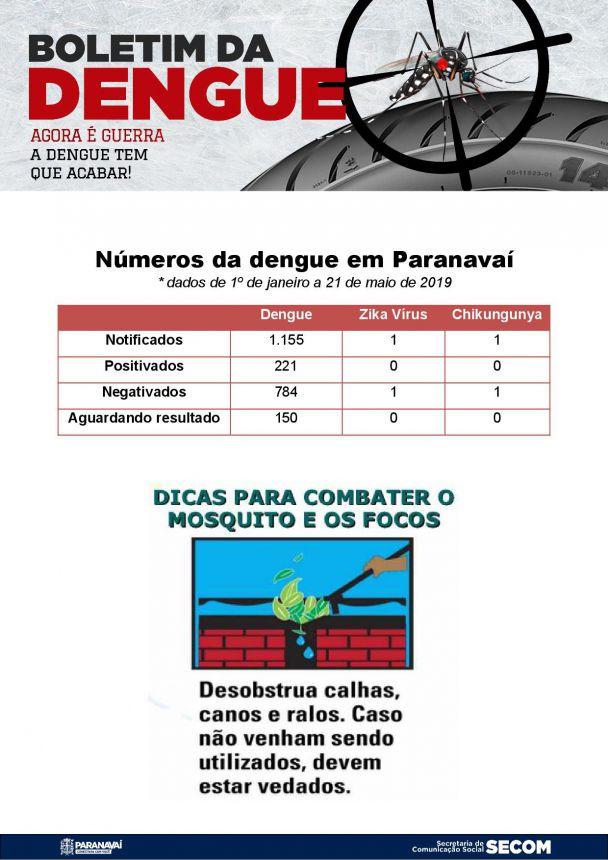 Boletim da Dengue - 1º de janeiro a 22 de maio de 2019
