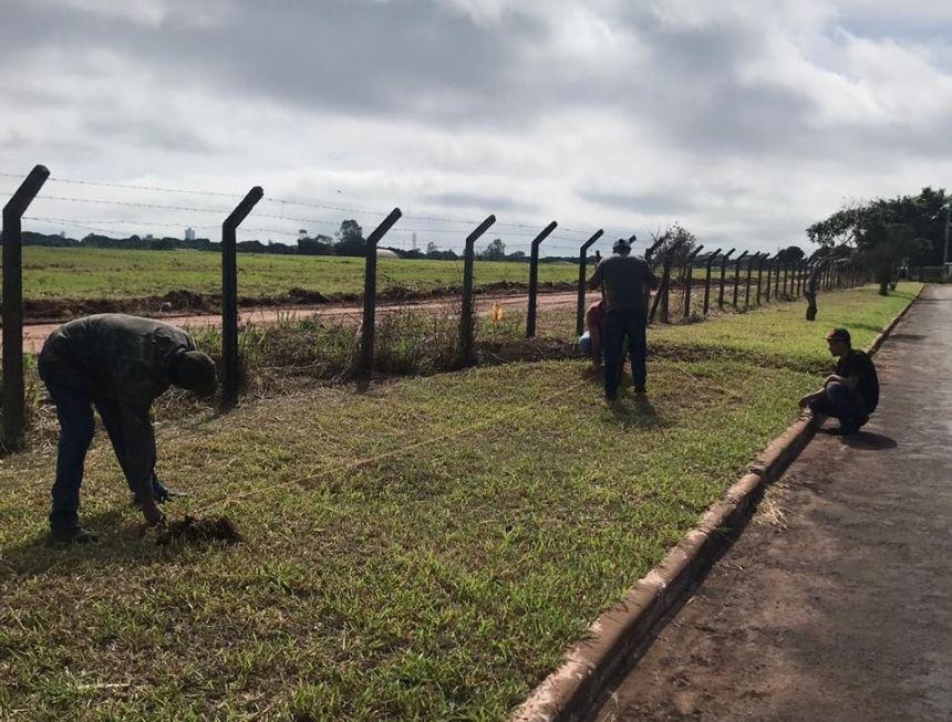 Município vai plantar 70 mudas de Ipê no Aeroporto Edu Chaves